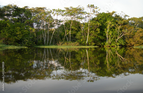 Rio Negro rainforest Amazon River basin in Brazil