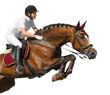 Fototapeten,reiter,springreiten,pferderücken,frau