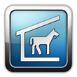 "Glossy Square Icon ""Stable"""