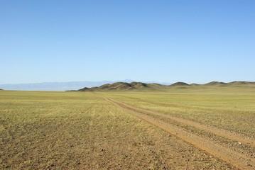 Piste, Mongolie