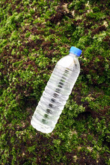 Algae and bottled water