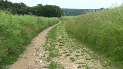 Chemin de randonnée en campagne
