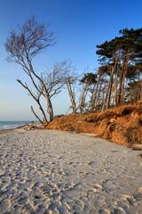 Strand Fischland-Darß
