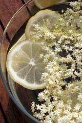 Zitronen und Holunderblüten schwimmen in Ansatz für Limo