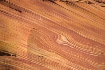 The Wave detail, Paria canyon, Arizona