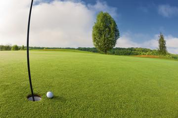 Golf ball near hole on golf course
