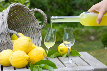 Limoncello and lemons