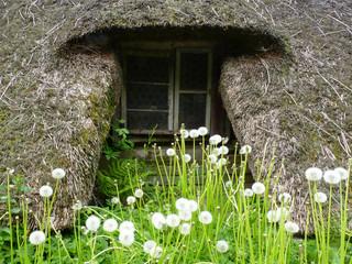 Strohdachfenster mit Pusteblumen