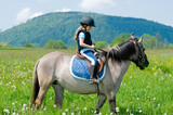 Horse riding - little girl is riding a horse poster