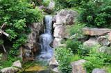 Fototapety Wasserfall in der Wildnis