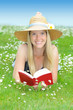 Junge Frau liest auf Blumenwiese