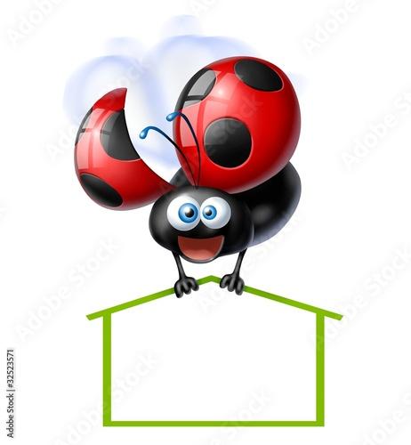 Illustrazione coccinella con casa - Coccinella foto gratis ...
