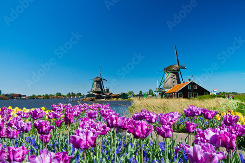 Poster windmill in holland