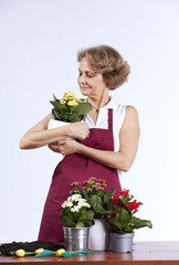 Senior woman planting flowers