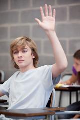 Schoolboy in classroom raising his hand