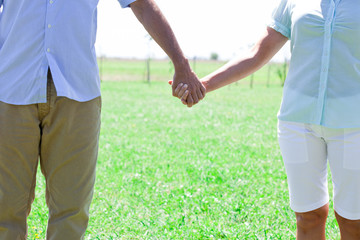 Couple standing hand in hand in meadow