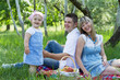 Young family of three on a picnic