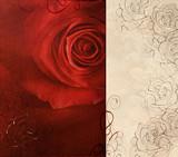 Red rose ornamental card