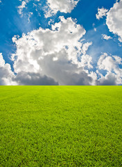 Green grass field and bkue sky with beam