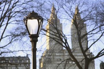 light post in central park; manhattan, new york, usa