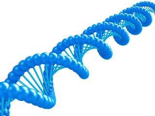DNA model.