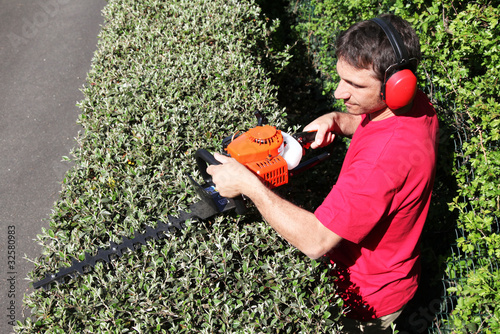 Jardinier p pini riste paysagiste taille une haie vive for Tarif jardinier paysagiste