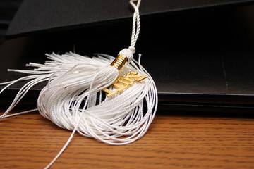 2011 Graduation tassle