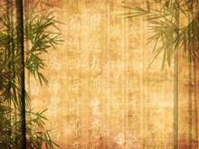 Silhouette de branches de bambou sur fond de papier.