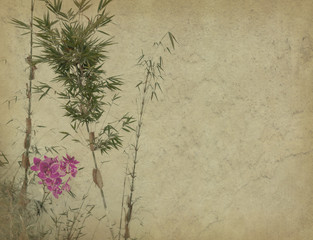 orchids with bamboo leaves on old grunge antique paper texture