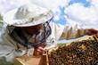 Working apiarist.