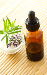essential oil dropper bottle with lavender and rosemary