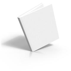 livre dynamique ebook blanc
