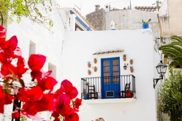 Ibiza white island architecture corner bougainvilleas