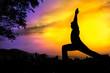 Yoga silhouette virabhadrasana I warrior pose