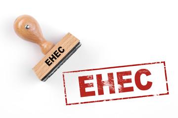 Enterohämorrhagische Escherichia coli EHEC