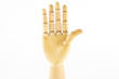 wooden hand: five fingers, hand up, fore hand