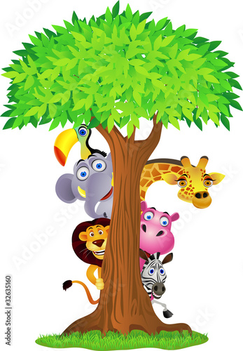 Animal hiding behind tree