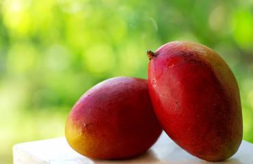 Dois frutos tropicais de manga.