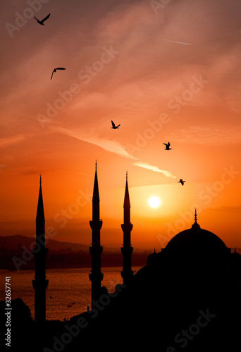 Night view of mosque, Istanbul