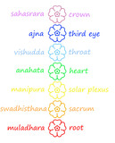 Colored flowers in chakra column poster
