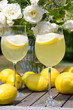 Cocktails with lemons in the garden