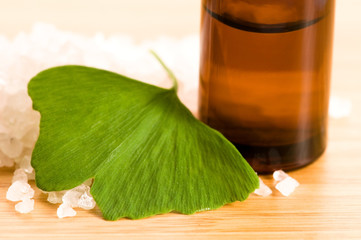 fresh leaves ginko biloba essential oil and sea salt