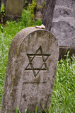 a lone headstone on a jewish cemetary surrounded by grass poster