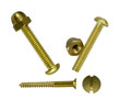 detail view of brass screws on a white background