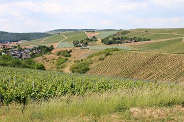 Weinbaugebiet Nahe