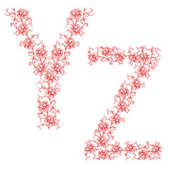 Hand drawing ornamental alphabet. Letter YZ