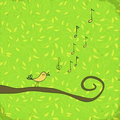 Singing bird in tree foliage.