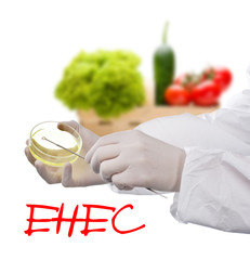 E. coli EHEC on Vegetables.