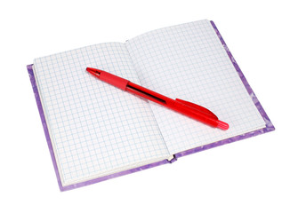notebook with a red pen