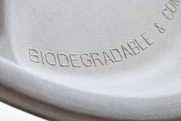 Biodegradable paper plate detail
